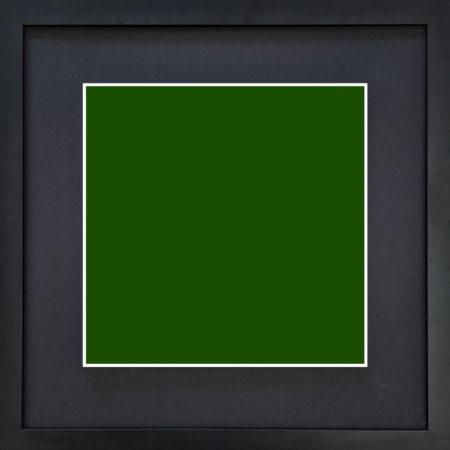 eArtist Abes green 194D00